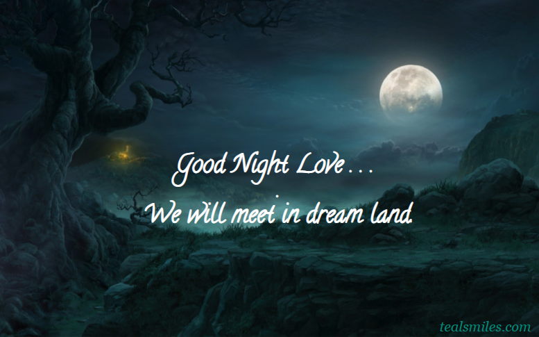 Good night text- sms-messages for him-boyfriend-husband