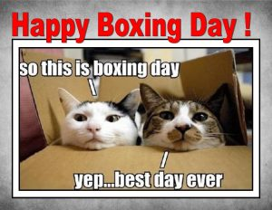 Happy-Boxing-Day-So-This-Is-Boxing-Day-Yep..-Best-Day-Ever- funny image
