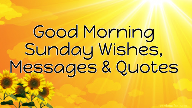 Happy Good Morning Sunday Wishes, Messages And Quotes