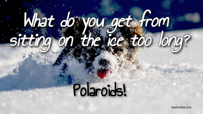 Funny winter jokes 7
