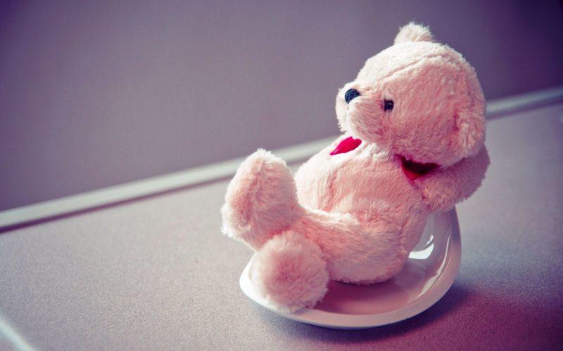 cute-teddy-bear-life quotes
